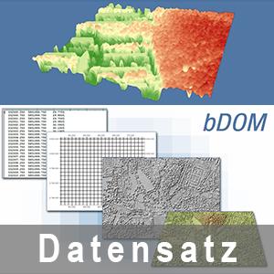 Beispielgrafik einer Nutzung des Bildbasiertes Digitales Oberflächenmodells (bDOM)