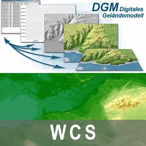 Digitales Geländemodell Gitterweite 1m Brandenburg (WCS)