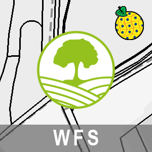 Bodenbedeckungsvektor ALKIS Brandenburg (INSPIRE-WFS)