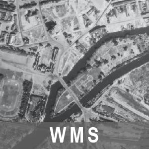 Digitale Orthophotos 1m Bodenauflösung Grau 1953 Brandenburg (WMS)
