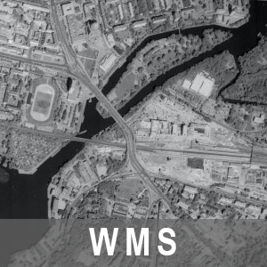 Digitale Orthophotos 50cm Bodenauflösung Grau 1992-1997 Brandenburg (WMS)
