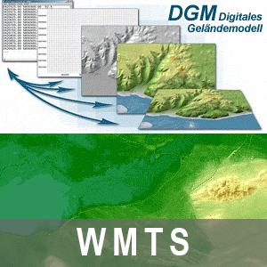 Digitales Geländemodell Gitterweite 1m Brandenburg (WMTS)