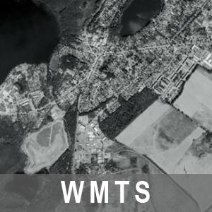 Digitale Orthophotos 20cm Bodenauflösung Grau Brandenburg mit Berlin (WMTS)