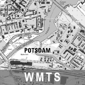 Digitale Topographische Karte 1 : 10 000 Grau Brandenburg mit Berlin (WMTS)