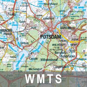 Digitale Topographische Landeskarte 1: 250 000 (WMTS_BB_LK250)